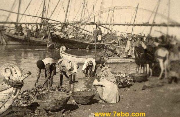 ماهیگیری کنار پل سفید